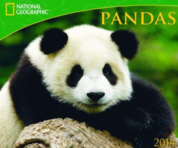 pandas-national-geographic-2014-wall-calendar