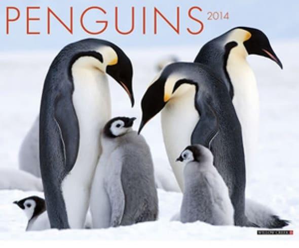 penguins-2014-wall-calendar