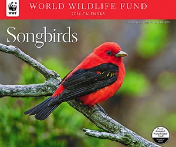 songbirds-wwf-2014-deluxe-wall-calendar