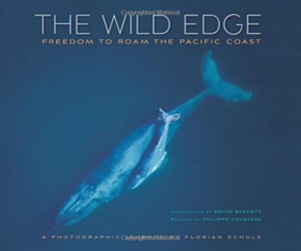 wild-edge-freedom-to-roam-the-pacific-coast