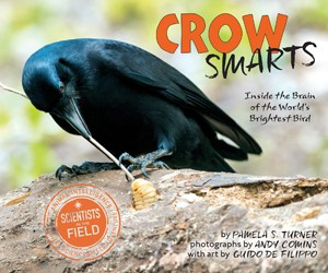 crow-smarts-inside-the-brain-of-the-worlds-brightest-bird