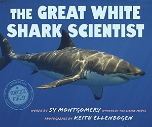 the-great-white-shark-scientist