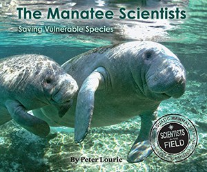 the-manatee-scientists-saving-vulnerable-species