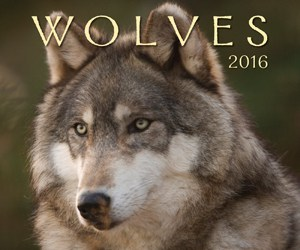 wolves-2016