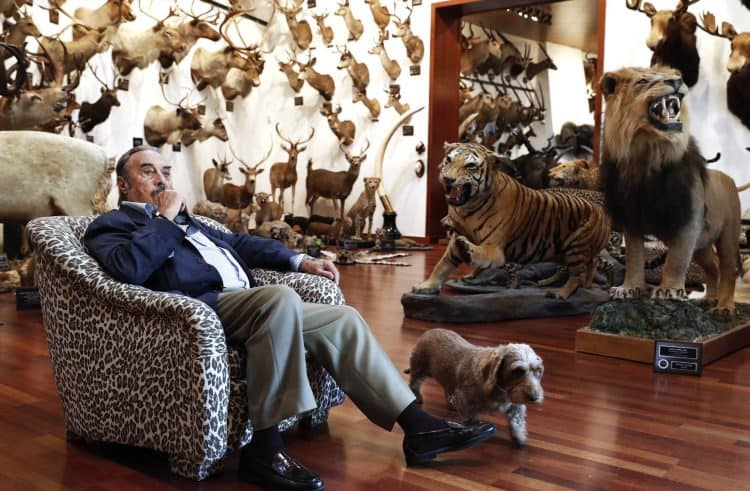 The Spanish businessman who hunted a museum's worth of animals