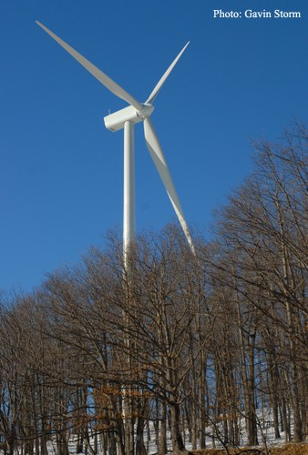 Feds Petitioned to Regulate Wind Industry