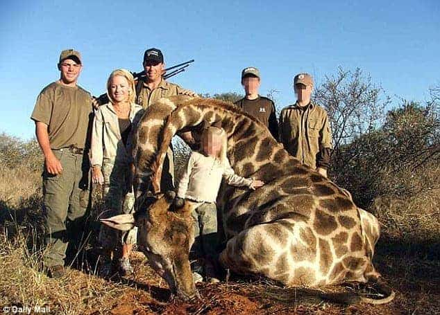 POLL: Should the killing of giraffes be outlawed?