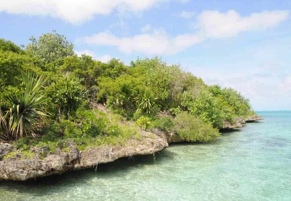 Ile aux Aigrettes (Mauritius) – A conservation success story
