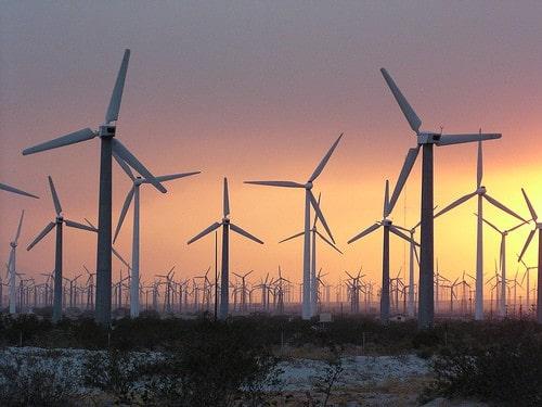 Bird-Friendly Wind Power