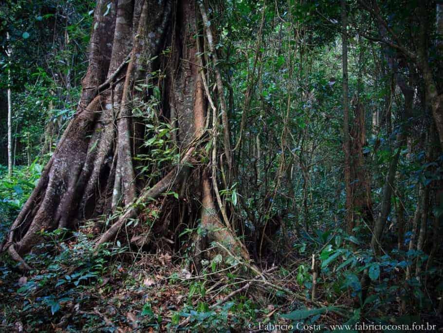 Vale Nature Reserve, a wildlife paradise!