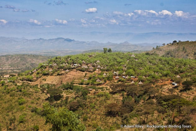 A Konso village perched atop a terraced hill