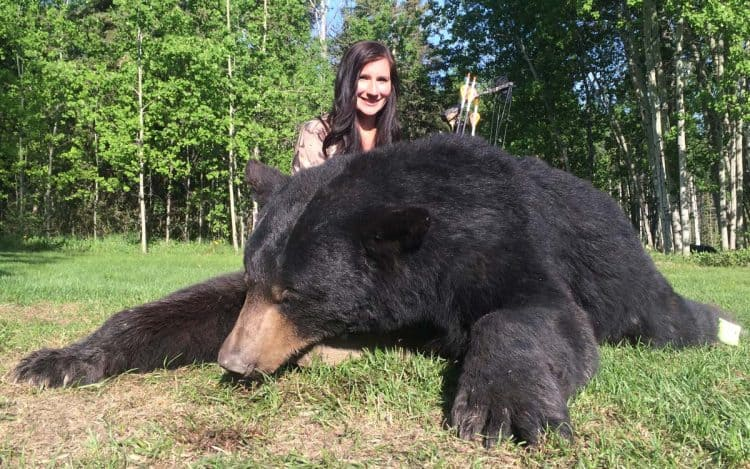 39 Bears Checked-In On First Day Of Black Bear Hunting Season, Runs October 21-25