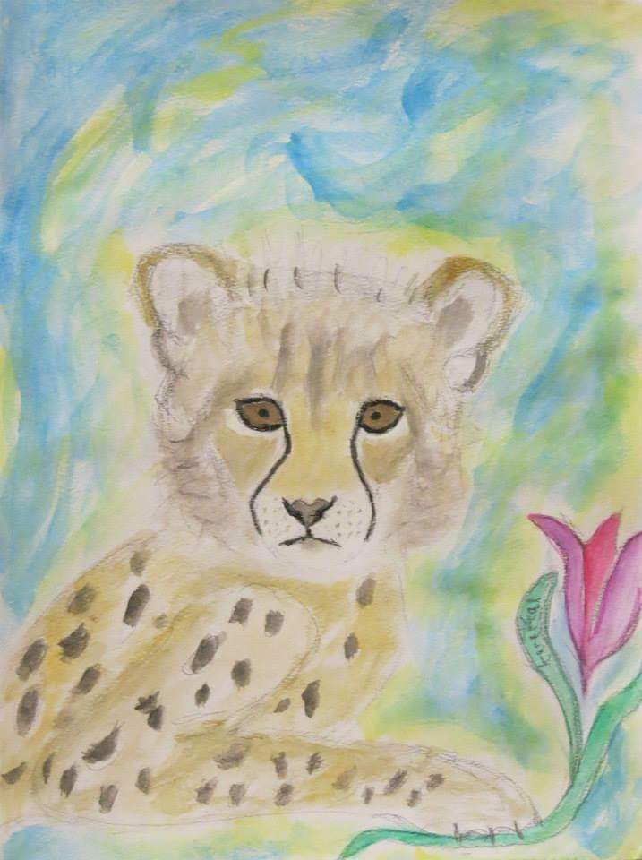 World Cheetah Day December 4!