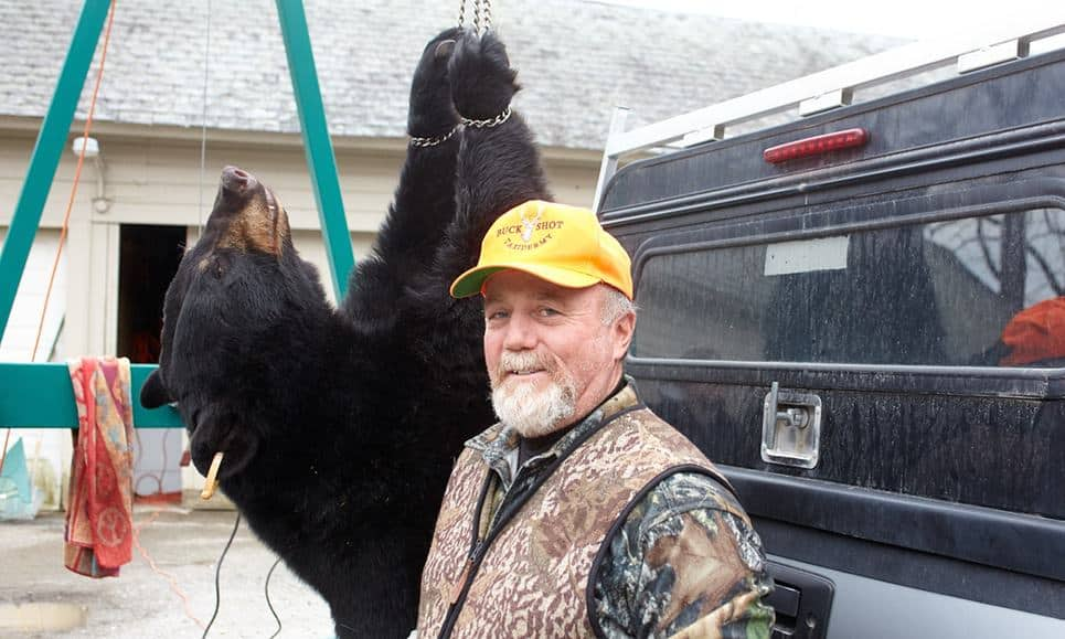 POLL: Should bear hunting in New Jersey be banned?