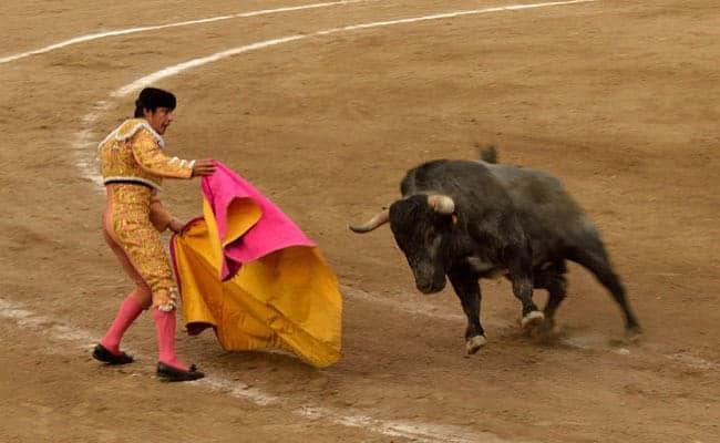 5 Cruel Animal Traditions That Make No Sense Today