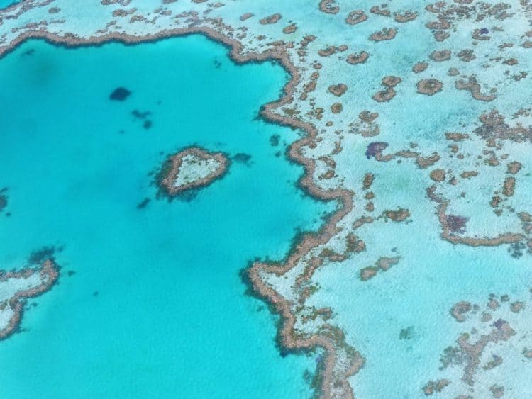 Environmental Awareness And The Great Barrier Reef