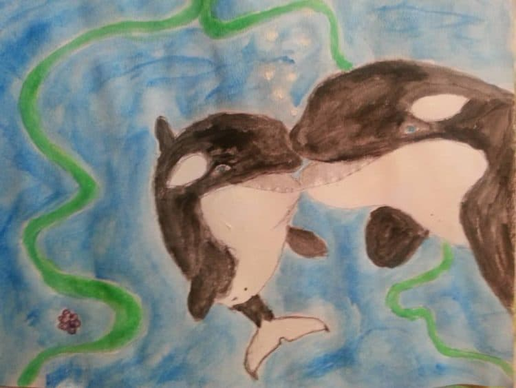World Orca Day!
