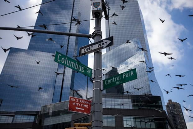 Buildings are killing up to 1bn birds a year in US, scientists estimate