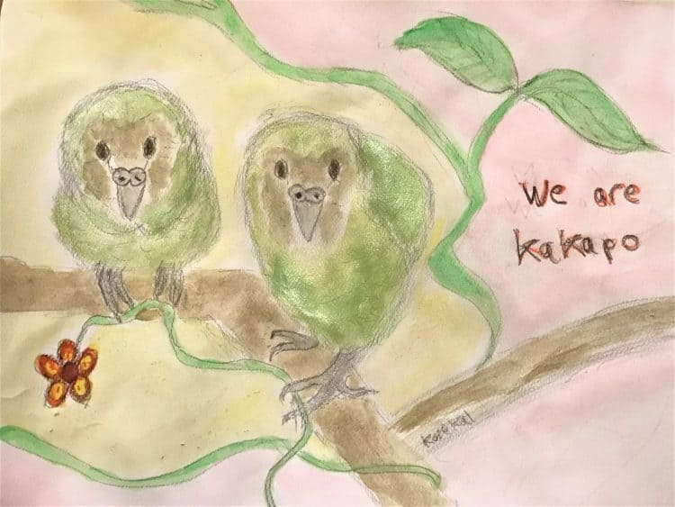 We Are Kakapo